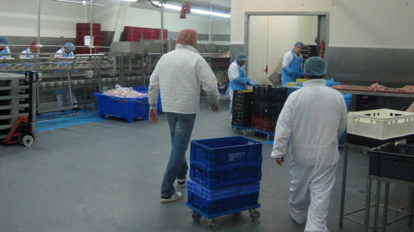 Men with hairnet walking in the production area of Scheria