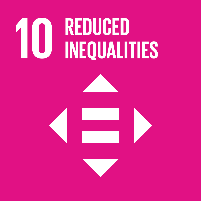 SDG Accelerator logo for Reduced inequalities