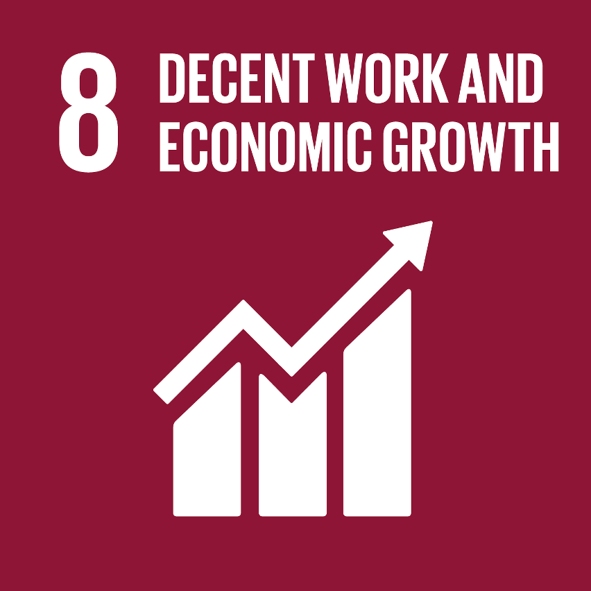 SDG Accelerator logo for Decent work and economic growth